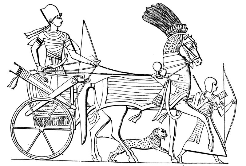 馬の文明ユーラシアとアンデス文明の衝突